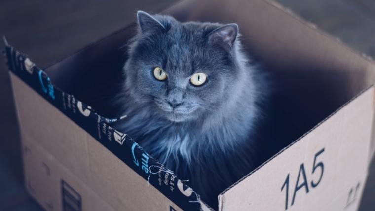 Amazonove nove eko kutije mogu se pretvoriti u kućice za mačke