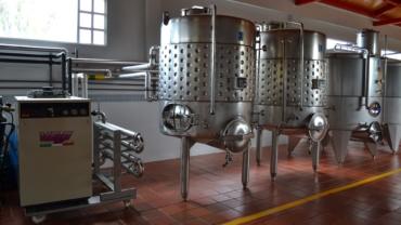 Otpad od proizvodnje vina može da se iskoristi za proizvodnju raznih stvari, pa i brašna
