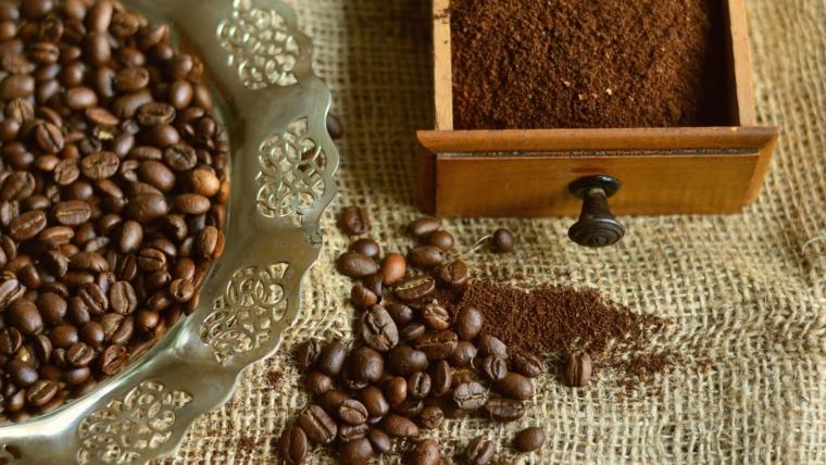 Belgijanci su nam pokazali kako od kafe nastaju pečurke