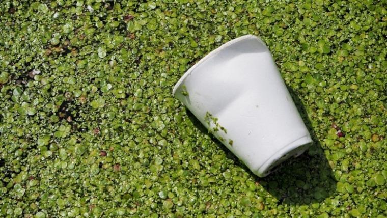 Da li je put do pakla popločan biorazgradivom plastikom