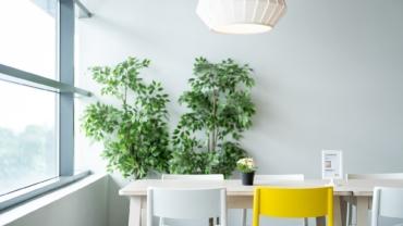 """Ikea otvara prvu """"second-hand"""" prodavnicu u Švedskoj"""