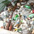 Srbija nema sistem upravljanja plastičnim otpadom – reciklira se dva odsto komunalnog plastičnog otpada