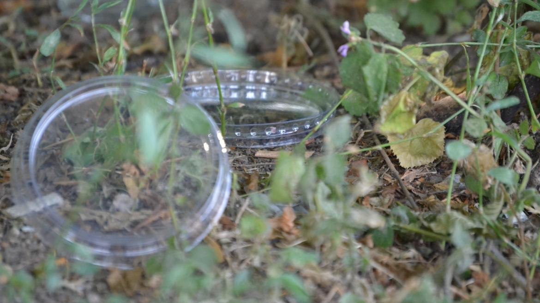 Lidl Srbija smanjuje upotrebu plastike za 12 tona godišnje